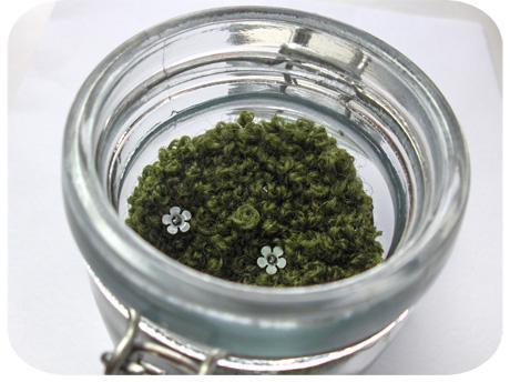 Pixie moss 2