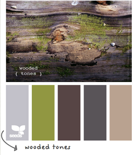 Design seeds wooded tones