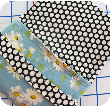 Daisies Lining Blog Image
